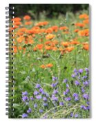 Orange And Purple Dream Flowers Spiral Notebook