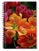 Orange And Red Tulip Lilies In Various Stages Of Bloom Spiral Notebook