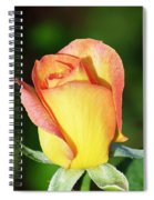 Orange And Yellow Rose Spiral Notebook