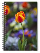 Orange And Yellow Tulip Spiral Notebook