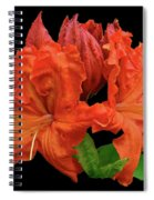 Orange Azalea Spiral Notebook