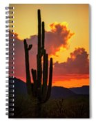 Orange Beautiful Sunset  Spiral Notebook