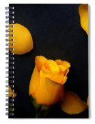 Orange Beauty 2 Spiral Notebook