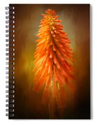 Orange Blast In The Garden Spiral Notebook