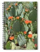 Orange Blossom Cactus  Spiral Notebook