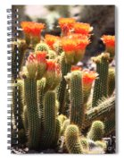 Orange Cactus Blooms Spiral Notebook