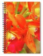 Orange Cattleya Orchid Spiral Notebook