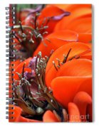 Orange Spiral Notebook