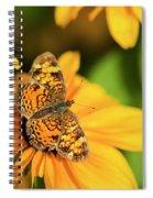 Orange Crescent Butterfly Spiral Notebook