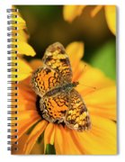 Orange Crescent Butterfly Spiral Notebook