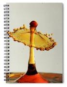 Orange Crown 9 Spiral Notebook