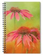 Orange Daisy Splash Spiral Notebook