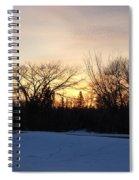 Orange Dawn Sky Behind Trees Spiral Notebook