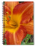 Orange Daylily With Dew Spiral Notebook
