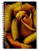 Orange Delight Spiral Notebook