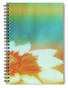 Orange Dreams Spiral Notebook