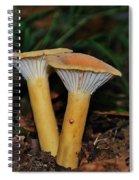 Orange Duo Spiral Notebook