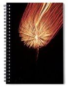 Orange Firework Spiral Notebook