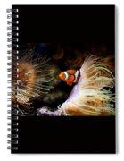 Orange Fish In Sea Anemones Spiral Notebook