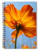 Orange Floral Summer Flower Art Print Daisy Type Blue Sky Baslee Troutman Spiral Notebook