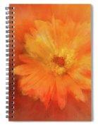 Orange Flower Energy Spiral Notebook