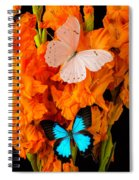 Orange Glads With Two Butterflies Spiral Notebook