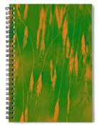 Orange Grass Spikes Spiral Notebook
