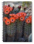 Orange Hedgehog Patch  Spiral Notebook