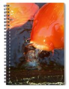 Orange Kiss Spiral Notebook