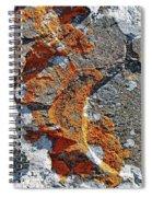 Orange Lichen Spiral Notebook