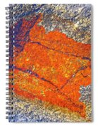 Orange Lichen Spiral Notebook