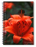Orange Lily Digital Painting Spiral Notebook