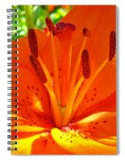 Orange Lily Flower Art Print Summer Lily Garden Baslee Troutman Spiral Notebook