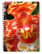 Orange Orchid Spiral Notebook