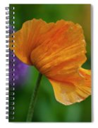 Orange Poppy Flower Spiral Notebook