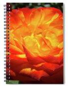Orange Red Rose Flower Art Prints Giclee Baslee Troutman Spiral Notebook