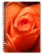 Orange Rose Photograph Spiral Notebook