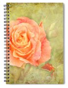Orange Rose With Old Paint Texture Background Spiral Notebook
