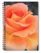 Orange Sherbert Spiral Notebook