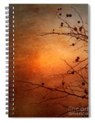 Orange Simplicity Spiral Notebook