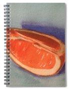 Orange Slice 2 Spiral Notebook