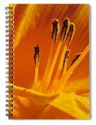 Orange Stamens Spiral Notebook