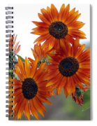 Orange Sunflower 1 Spiral Notebook