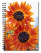 Orange Sunflower 2 Spiral Notebook