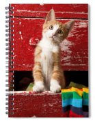 Orange Tabby Kitten In Red Drawer  Spiral Notebook