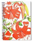 Orange Tiger Lilies Spiral Notebook