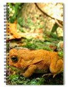 Orange Toad Spiral Notebook