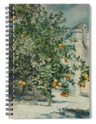Orange Trees And Gate Spiral Notebook