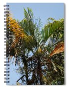 Orange Trees Spiral Notebook