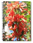 Orange Trumpet Flower Spiral Notebook